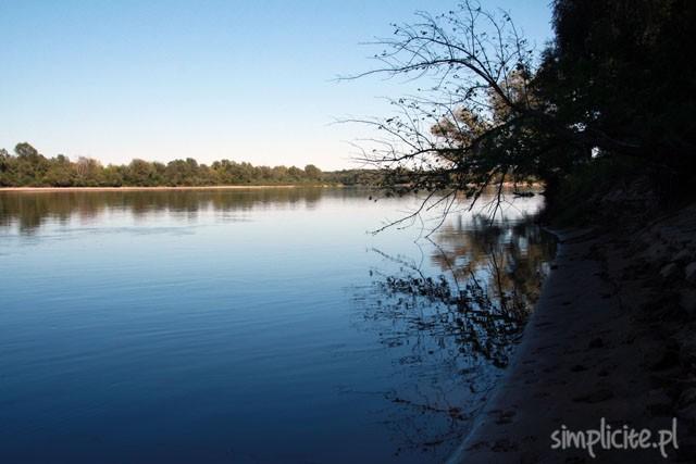 narew wisła rzeka warszawa pies weekend czas wolny
