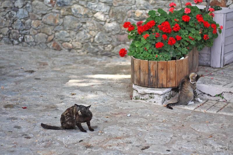 grecja-peloponez-przewodnik_4