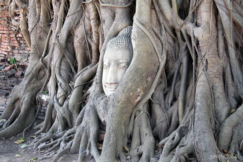 tajlandia-przewodnik-co-warto-zobaczyc-ajutthaja-4