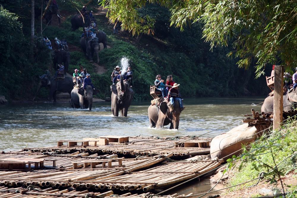 tajlandia-chiang-mai-elephant-camp-1
