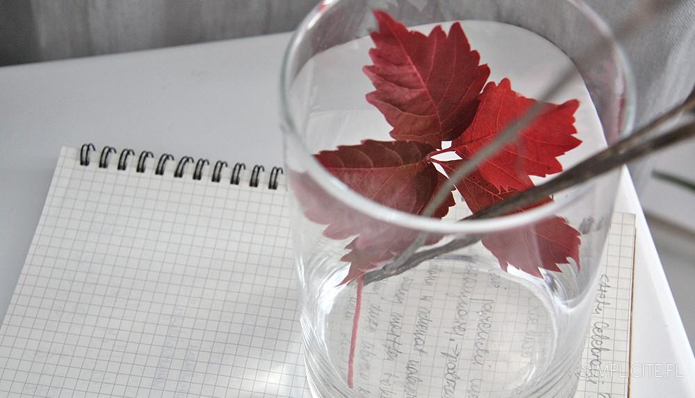 blog-lifestylowy-jesien-simplicite