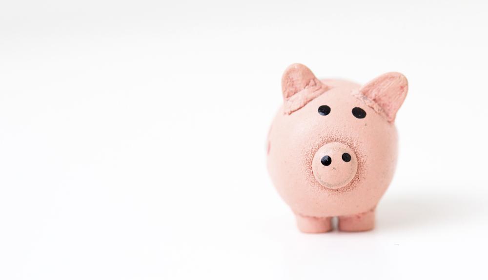 Jak stałam się finansowym mistrzem ninja? Opowieść o tym, że pieniądze są ważne