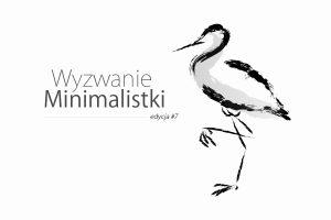 wyzwanie minimalistki minimalizm